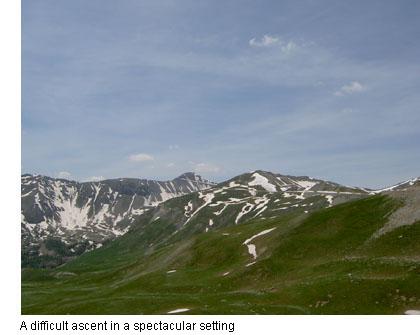 conseils faux la montagne