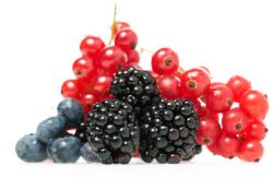 Antioxydants fruits rouges