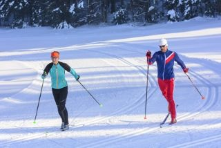 hommes pratiquant le ski de fond en forêt